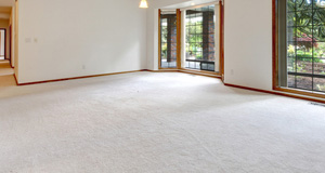 An empty lounge room with carpet